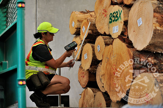 NZ Forestry news - JAS Payments for log exports