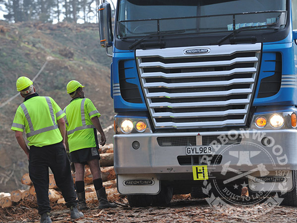 Ribbonwood Health & Safety of Forest Workers