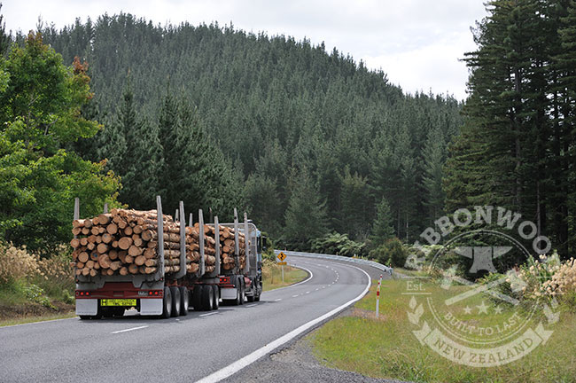 NZ Forestry news Forest Growers Levy
